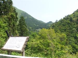 Oshigatao29