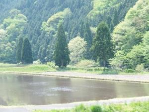 Tanbotoki