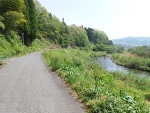Yoshiwa1