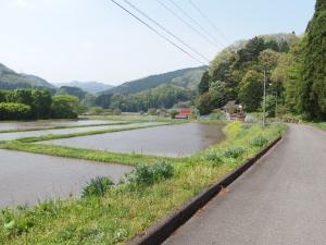 Yoshiwa3